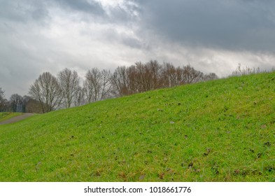 Cloudy sky above green meadow in Hamburg, Germany
