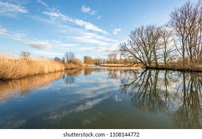 The cloudy sky and the bare trees on the edge of a wide creek in the National Park De Biesbosch near the Dutch village Werkendam are reflected in the mirror-like water surface.