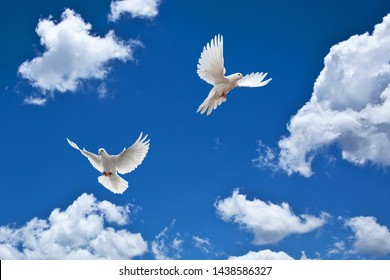cloudy sky and flying doves