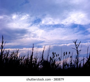 Cloudy sky with grass land foreground