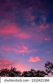 Cloudy sky highlighting a pink sunset with trees
