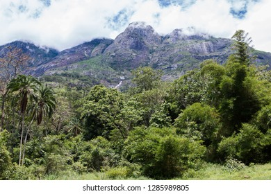 Cloudy sky over Mount Mulanje with the forest at the foot of the mountain.