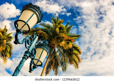 Cloudy sky, palms and street lamp in Fort de France, Martinique Island.  Fort de France is the capital of Martinique island, Lesser Antilles.