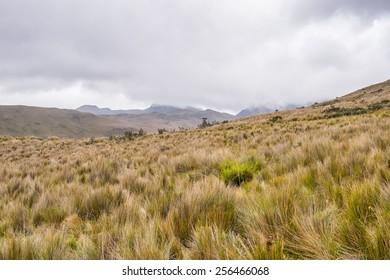 Cloudy weather and beautiful nature of Ecuador