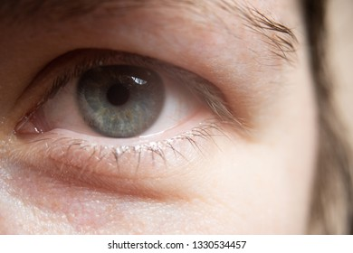 Clouseup photo of the woman's eye