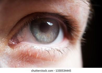 Clouseup shot of the woman's eye