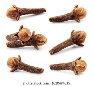 Clove. Dry cloves isolated on white. Carnation Spice. Collection.