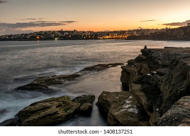 Clovelly coastline looking at Coogee beach, Australia at sunset.