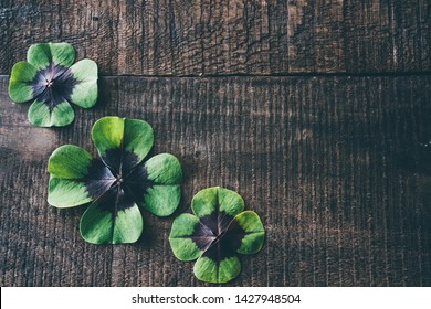 Clover at wooden background, lucky shamrock, St.Patrick's day symbol.
