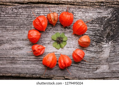 cloverleaf circled by red physalis