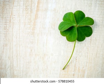Clovers leaves on shabby wooden background. The symbolic of Four Leaf Clover the first is for faith, the second is for hope, the third is for love, and the fourth is for luck.