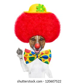 clown dog with red wig and nose waving hello
