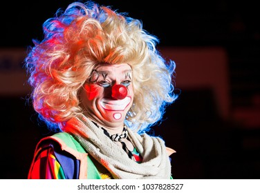 the clown performs in the circus