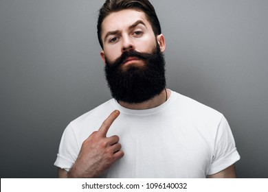 Clsoe up cropped portrait of brutal handsome Caucasian male indicate to his trendy beard, posing on gray studio background. Bearded barber European man model with confident expression on his face