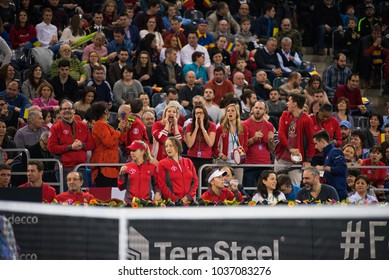 CLUJ NAPOCA, ROMANIA - FEBRUARY 11, 2018: Crowd of people, Canadian tennis fans supporting and applauding in the tribune, during a Fed Cup match between Romania and Canada