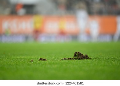 Clump of grass on the football pitch.