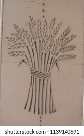 A clump of wheat engraving. An engraving of a clump of wheat from an English building.