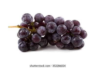 Cluster of black wine grape