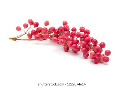 cluster of pink peppercorns, fruit of Peruvian pepper tree Schinus molle isolated on white