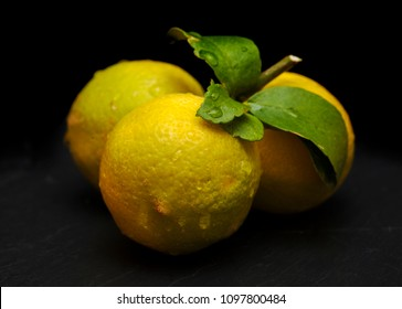 cluster of three lemons on the same branch, on black slate board, black copyspace above