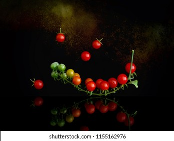 Cluster of tiny red currant tomatoes on vine , Solanum pimpinellifolium, on shiny surface and dark background. Still life.