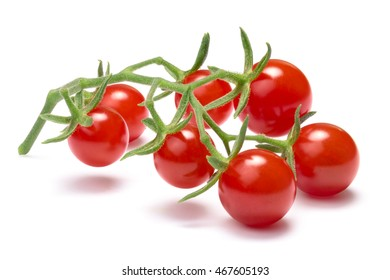 Cluster of tiny tomatoes on vine (Currant, Solanum pimpinellifolium). Clipping path, shadow separated, infinite depth of field