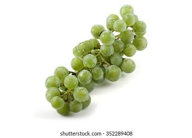 Cluster of wine grape