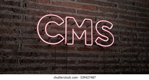 CMS -Realistic Neon Sign on Brick Wall background - 3D rendered royalty free stock image. Can be used for online banner ads and direct mailers.