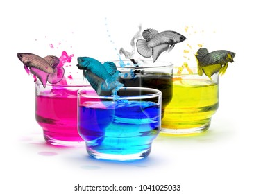 CMYK color, concept design by jumping fighting fish animal.