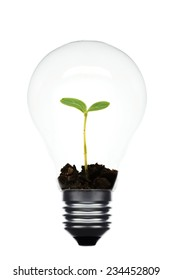 co concept: variety of light bulbs with plant inside
