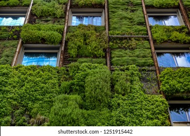 CO2 reduction: Detail of vertical garden on the wall of a high-rise building