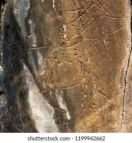 COA VALLEY, PORTUGAL – June 22, 2018:  The Prehistoric Rock Art site of the Coa Valley is an open air Upper Paleolithic archaeological site in northeast Portugal