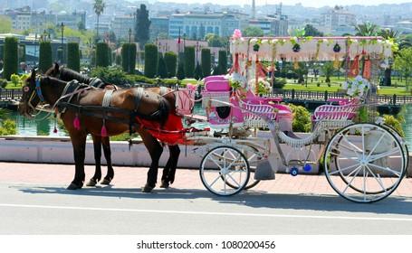 Coach horses and coachman fayton in Buyukada