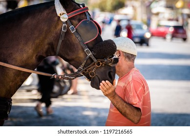 Coachman (traditional horse drawn carriage driver) petting a horse with bridles and blinders on. Old man wearing a Sicilian Coppola hat with hand on his horse's mouth. Blurry background.
