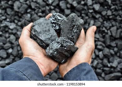 Kohle in den Händen des Arbeitnehmers Bergarbeiter. Bild kann verwendet werden, um Ideen über Kohlebergbau, Energiequelle oder Umweltschutz.