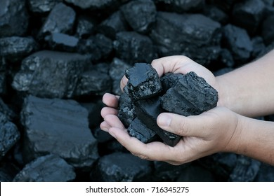Coal mining - hands holding sunlit dark coal stone part. Concept coal mining, coal processing, energy 