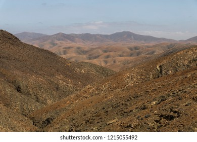 Coarse desert background