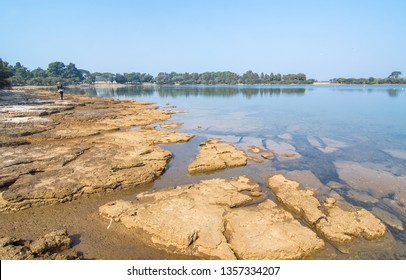 The coas of Brijuni(Brioni)island,natioanal park Brijuni,Istria region,Croatia