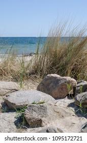 at the coast (baltic sea)