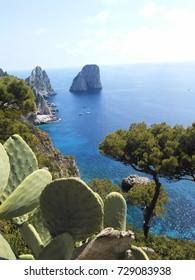 Coast of Capri, Italy.