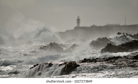 Coast of Gran canaria with strong swell and lighthouse, La Garita, Canary islands