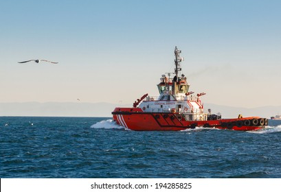 Coast guard vessel in turkey on bosphorus and seagull on the background of blue sky