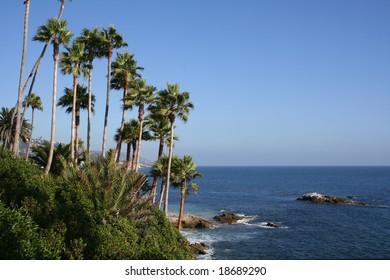 Coast in Laguna Beach, California