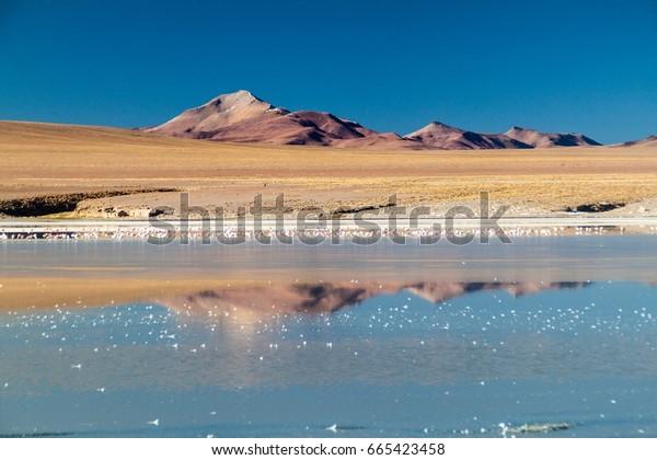 Coast of Laguna Collpa lake in Reserva Nacional de Fauna Andina Eduardo Avaroa protected area, Bolivia