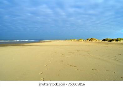 coast near ouddorp, netherlands