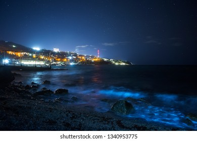 Coast night Alupka