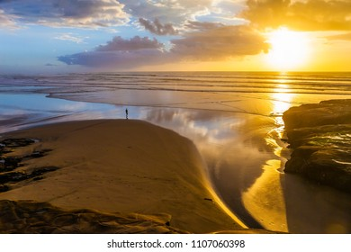 Coast of the North Island of New Zealand. Phenomenal beautiful sunset on the beach near Auckland. Concept of active and ecological tourism