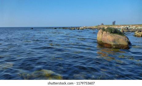 Coast for sea trout