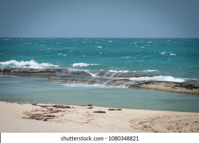 Coast of Sir Bani Yas Island
