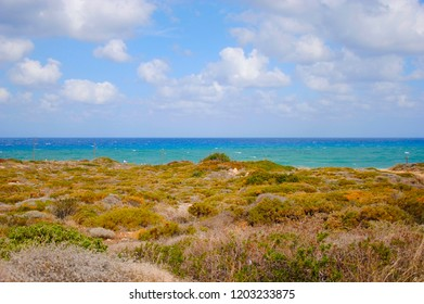 coast of Sisi in Crete in Greece with plants nearby